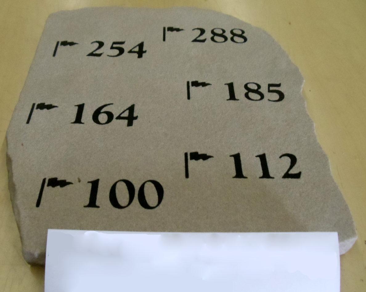 """P#3016 - 16"""" x 18"""""""